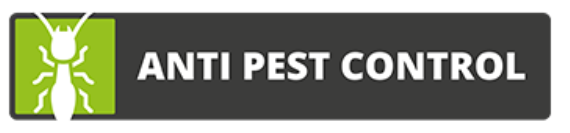 wespennest verwijderen Lelystad